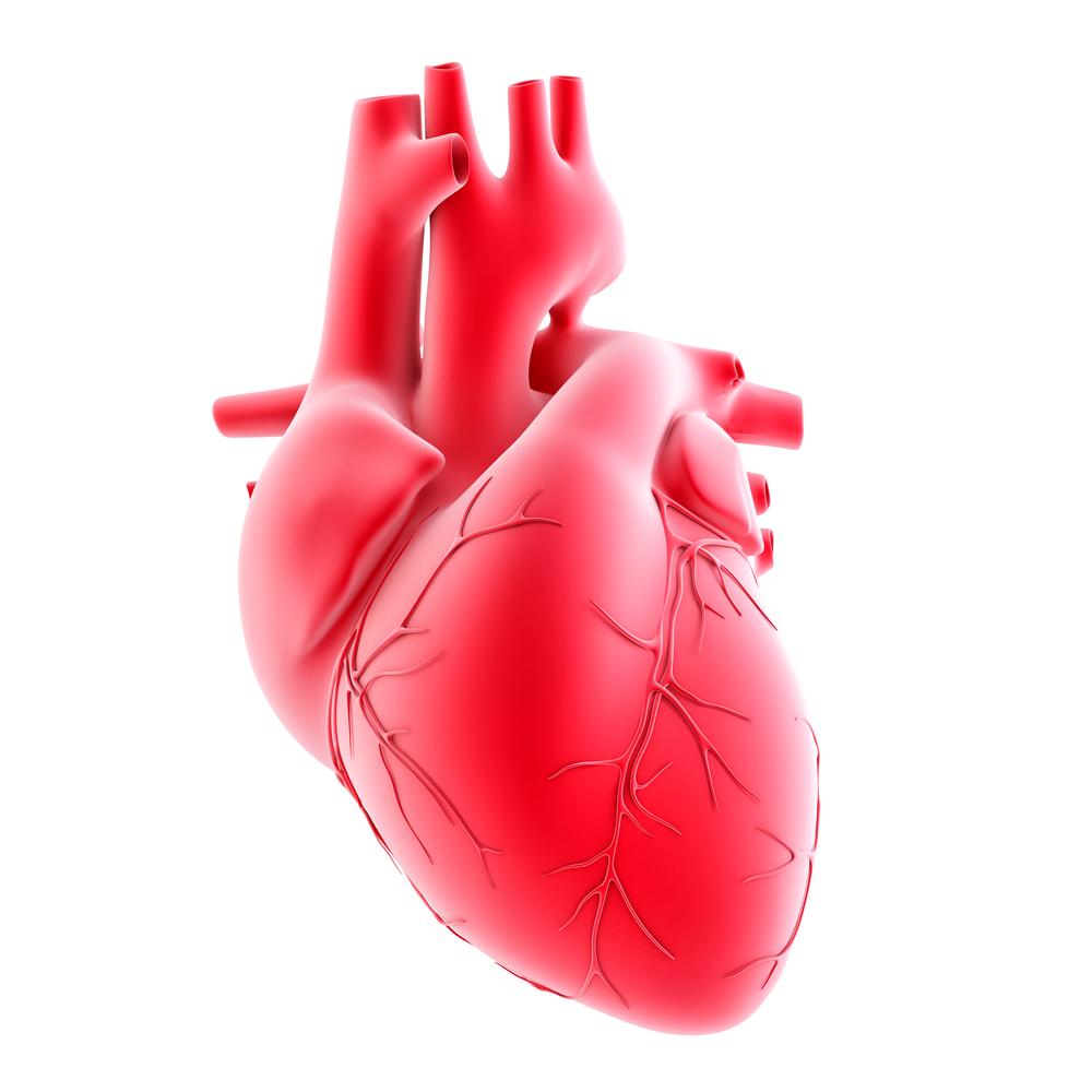 doctors for chest pain La Crescenta